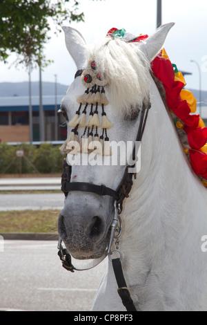Andalusischen weißen Pferdekopf at Fira de Abril Fair Spanien - Stockfoto