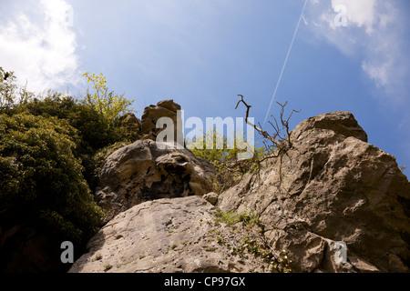 Creswell Crags Kalkstein Schlucht, Derbyshire, England. - Stockfoto
