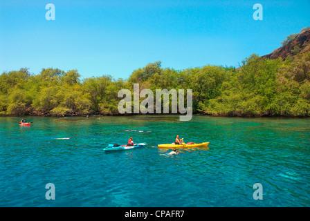 Hawaii, Big Island, Kona, Kealakekua Bay, Captain Cook Monument. Kajakfahrer. - Stockfoto