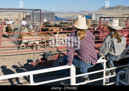 USA, West-Texas. Zwei junge Mädchen beobachten Cowboys Rinder für den Versand nach einer Razzia auf einer West Texas - Stockfoto
