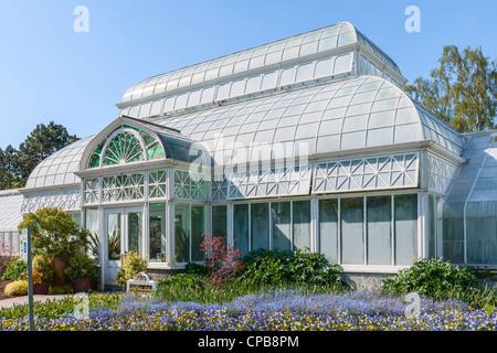 Volunteer Park Conservatory, Seattle - Stockfoto