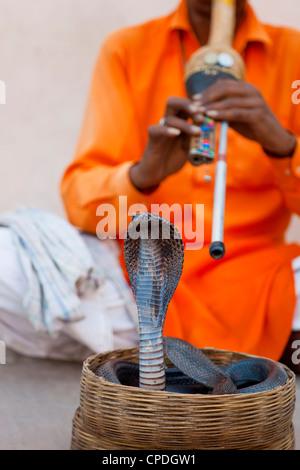 Cobra Snake Charmer außerhalb der Stadt-Palast, Jaipur, Rajasthan, Indien, Asien - Stockfoto