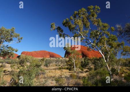 Tal des Windes, Kata Tjuta, Olgas, Australien, Northern Territory, Rote Kliff, Einsamkeit, Landschaft, Heilige Land, - Stockfoto