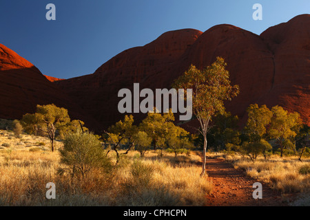 Weg, Weg, Tal des Windes, Kata Tjuta, Olgas, Australien, Northern Territory, Rote Kliff, Einsamkeit, Landschaft, - Stockfoto