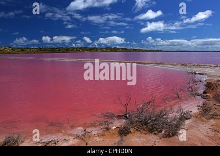 Rosa Hutt Lagune, port Gregory, Westaustralien, Westküste, Australien, See, Meer, rosa, Lagune, Färbung, Beta-Carotin, - Stockfoto