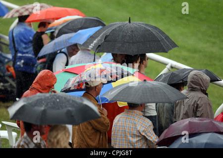 Menschen bei Pferderennen versteckt unter Sonnenschirmen bei Regen, Hamburg, Deutschland - Stockfoto