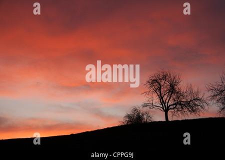 Sonnenaufgang am Morgen - Stockfoto