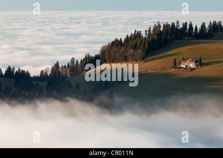 Blick vom Mt Hirschberg mit Almhütte und Kapelle in der Nähe von Mt Pfaender im Herbst während Hochnebel, Österreich, - Stockfoto