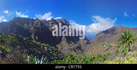 Barranco de Masca-Schlucht mit dem Dorf Masca, Teneriffa, Kanarische Inseln, Spanien, Europa - Stockfoto