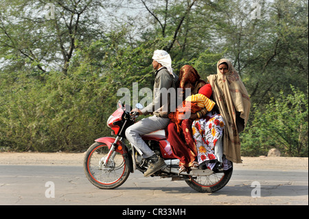 Indische Familie reisen auf einem Motorrad, in der Nähe von Gwalior, Rajasthan, Indien, Indien, Nordasien - Stockfoto
