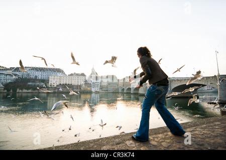 Junge Frau, die Fütterung Möwen auf dem Rhein, hinter der alten Stadt, Basel, Schweiz, Europa - Stockfoto
