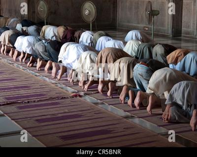 Muslime beten in Jama Mashid in Lahore, einer der größten Moscheen in Asien, Punjab, Pakistan, Südasien - Stockfoto