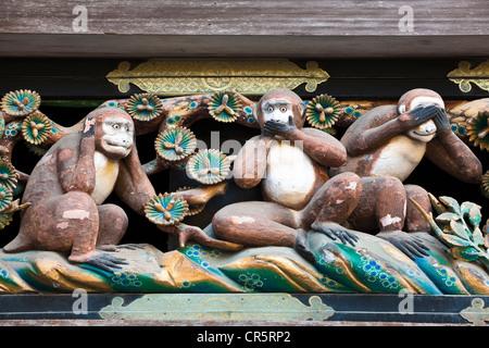 Japan, Insel Honshu, Kanto-Region, Stadt von Nikko, Schreine und Tempel von Nikko UNESCO-Welterbe, Tosho Gu Sanctuary, - Stockfoto