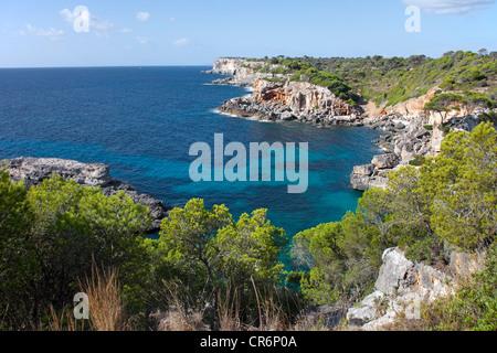 Felsigen Küste in der Nähe von Cala de S'Almonia, Cap de ses Salines Naturschutzgebiet, Cala Llombards, Mallorca, - Stockfoto