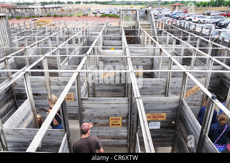 Labyrinth in Stockyards in Fort Worth, Texas, USA - Stockfoto