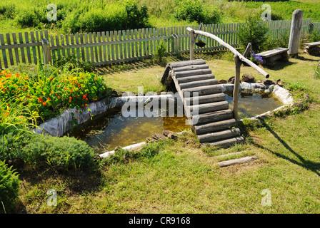 Zierfische in see stockfoto bild 17697936 alamy for Zierfische gartenteich