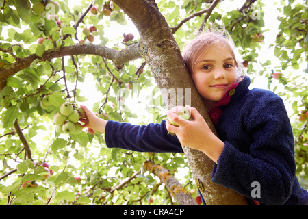 Lächelnde Mädchen pflücken Obst vom Baum - Stockfoto