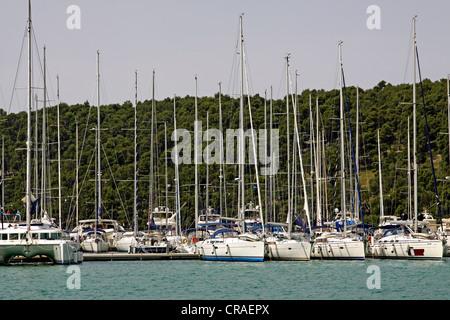Marina, Fluss Krka Skradin, Dalmatien, Kroatien, Europa - Stockfoto