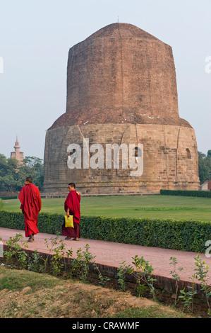 Mönche vor der Dhamek Stupa, buddhistischen Heiligen Ort Sarnath, Uttar Pradesh, Indien, Asien - Stockfoto