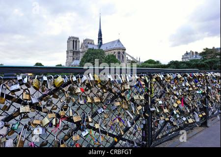Schlösser der Liebe auf dem Geländer der Brücke Pont de L'Archeveche, hinter der Kathedrale Notre-Dame de Paris, - Stockfoto