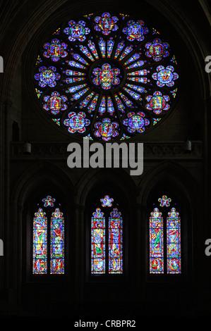 """Südliche Rosette """"Jubel Kirche' von Joseph Reynolds und Wilbur Burnham, Washington National Cathedral oder Cathedral - Stockfoto"""