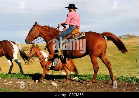 Weibliche Cowgirl Reiten Mit Kanadischen Flagge Beim Rodeo