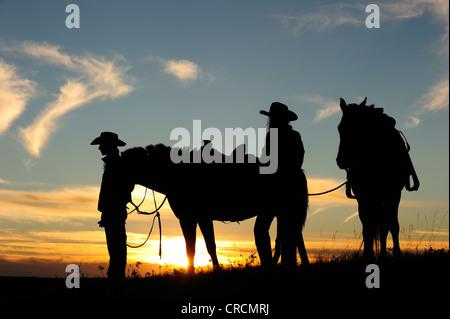 Cowgirl und Cowboy mit Pferden bei Sonnenuntergang, Saskatchewan, Kanada, Nordamerika - Stockfoto