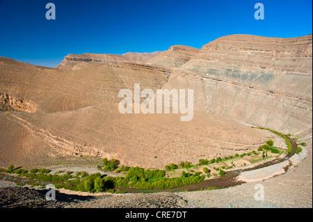 Canyon-artigen Tal des Flusses Dades, Schluchten Dadès-Schlucht, Berber, Anbau von kleinen Feldern am Fluss, Dades - Stockfoto