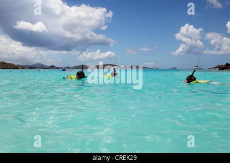 Junges Mädchen schwimmt, ihr Vater und Bruder, Schnorcheln in St. John - Stockfoto