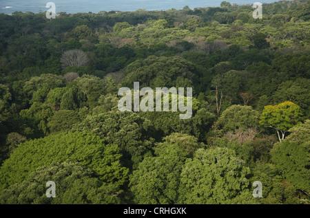 Luftaufnahme von Regenwald und Küste in der Nähe von Sirena Ranger Station. Corcovado Nationalpark, Osa Halbinsel, - Stockfoto