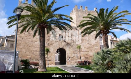 Kanarische Insel Dattelpalme (Phoenix Canariensis), Handflächen vor dem historischen Stadttor, Alcudia, Mallorca, - Stockfoto