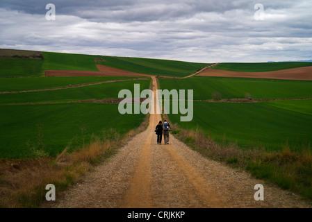 Wanderer auf El Camino de Santiago de Compostela in Nordspanien - Stockfoto