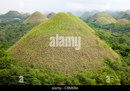 Chocolate Hills auf Bohol, Philippinen - Stockfoto