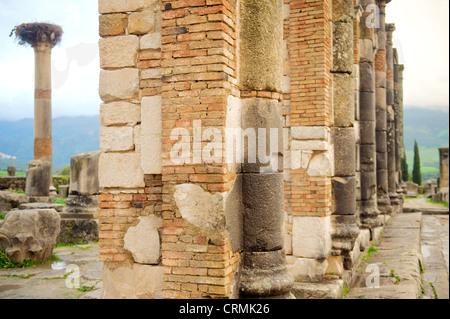 Basilika an der Ausgrabungsstätte Volubilis (ein UNESCO-Weltkulturerbe), in der Nähe von Moulay Idriss und Meknes, - Stockfoto
