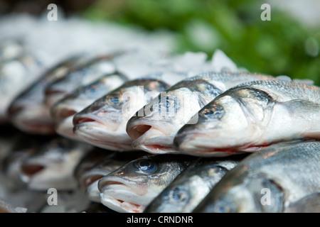 Frischer Fisch zum Verkauf in Borough Market. - Stockfoto