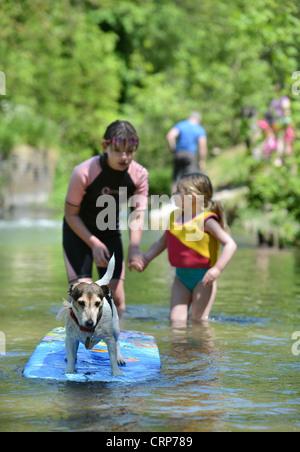 Zwei Mädchen spielen mit ihrem Hund in den Fluss Avon im Figheldean Mühlenteich, Wiltshire UK - Stockfoto