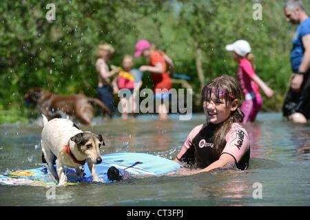 Ein Mädchen spielen mit ihrem Hund in den Fluss Avon im Figheldean Mühlenteich, Wiltshire UK - Stockfoto