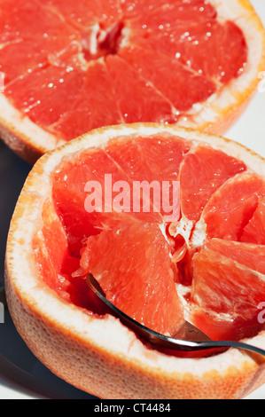 Ein Löffel mit einem Querschnitt von Grapefruit beruht auf einer geschnittenen Grapefruit die Hälfte mit der anderen - Stockfoto