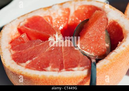 Ein Löffel mit einem Querschnitt von Grapefruit beruht auf einer geschnittenen Grapefruit die Hälfte. - Stockfoto