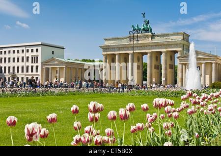 Brandenburger Tor-Pariser Platz mit Brunnen, Gärten und Tulpen Berlin Deutschland EU Europa - Stockfoto
