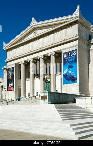 Natural History Museum New York Eintritt