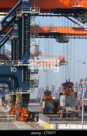 Hafenkräne heben Container im Hafen oder in Rotterdam - Stockfoto