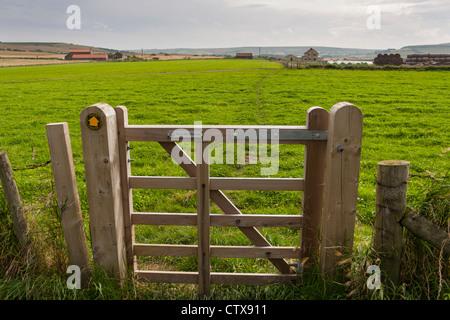 Ein Tor auf einen Fußweg durch ein Bauern-Feld. - Stockfoto