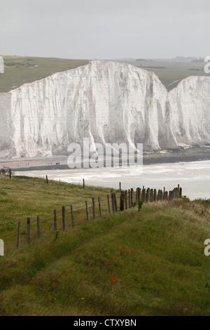 Die weißen Klippen von den Seven Sisters am Beachy Head von Seaford Kopf Natur gesehen behalten in East Sussex, - Stockfoto