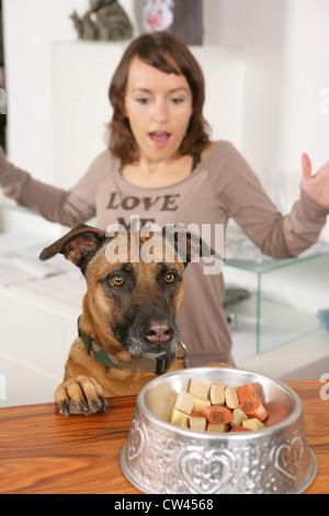 Gemischt-Rasse Hund denken helfen sich aus einer Schale mit Keksen während seiner Besitzer entsetzt im Hintergrund - Stockfoto