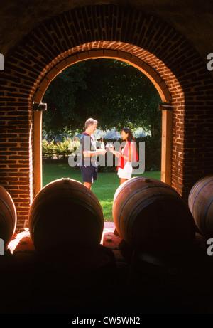 Weinproben Weinberge rund um Stellenbosch in der Provinz Westkap in Südafrika - Stockfoto