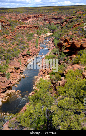 Murchison River fließt durch den Kalbarri National Park Western Australia - Stockfoto