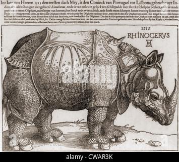 DAS Nashorn, Holzschnitt von Albrecht Dürer (1471-1528), gezeichnet von der Beschreibung von einem Panzernashorn. - Stockfoto