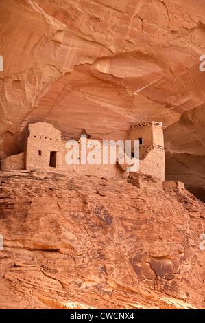 Elk288-1271v-Arizona, Canyon de Chelly Nationalmonument, Canyon del Muerto, Mummy Cave Ruin, 12. c - Stockfoto