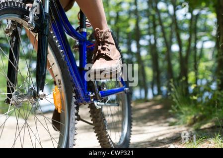 Frau Reiten Fahrrad durch Wald - Stockfoto